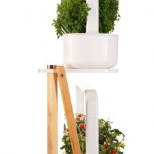 Click And Grow Smart Garden Plante Stander